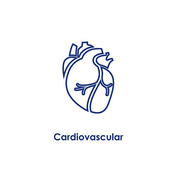 Cardiovasular